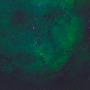 IC 1396 Elephant Trunk Nebula,                                Jason Wells