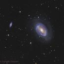 NGC4725,                                Daniele Gasparri