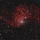 IC 405 Flaming Star Nebula,                                herwig_p