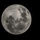 August Full Moon 100% Illuminated,                                Chris Dee