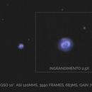 NGC7662,                                Lorenzo Palloni