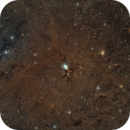 NGC1333 and dust clouds,                                Sendhil Chinnasamy