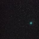 Wirtanen 2,                                Vega