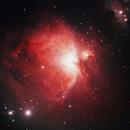 Orion Nebula with home made RASA 36,                                Ray's Astrophotography
