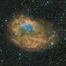 Sh2-261,                                regis83