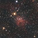 IC417 Spider Nebula,                                Martin Lysomirski