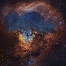 NGC 7822 & Sh2-171 - The Skull and the Teddy Bear,                                Timothy Martin & Nic Patridge