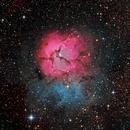 Trifid Nebula,                                KuriousGeorge