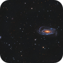 NGC 5033 and companions,                                Epicycle