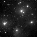 M45 mono,                                Rino