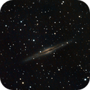 NGC 891,                                Rich Christy