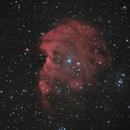 NGC2174/NGC2175 Monkeyhead Nebula,                                Nightsky_NL