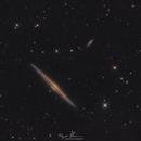 Dawn of Destiny ( NGC 4565, The Needle Galaxy ),                                Reza Hakimi