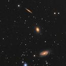 Draco Trio, NGC 5981, 5982, 5985,                                Graham Winstanley