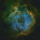 NGC2237 - Rosette Nebula in SHO,                                Philipp Müller