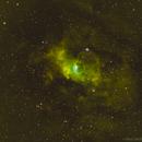 NGC 7635 SHO,                                Alexis Carvalho