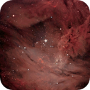 Way Inside The Cone Nebula,                                Tom Peter AKA Ast...