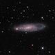 The Needle's Eye Galaxy (NGC 247),                                DiscoDuck