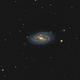 Galassia dell' aspirapolvere - M109,                                StefanoBertacco