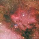 IC 5070 - Pelican Nebula,                                Riccardo A. Balle...