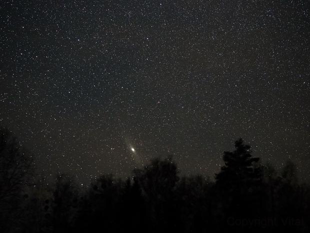 Andromeda Constellation,                                Vital