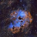 Tadpoles Nebula (IC 410),                                Flying_Lemurs