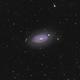 M63 - Sunflower Galaxy,                                Yizhou Zhang