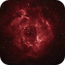 Rosette Nebula,                                Giorgio Ferrari