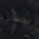 constellations in the summer sky,                                Franz Ferdinand