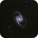 NGC 1365 Great Barred Galaxy in Fornax,                                Don Pearce