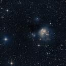 NGC 7129,                                GONZALO