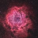 NGC2237 - La nébuleuse de la Rosette,                                ZlochTeamAstro
