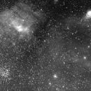 Bubble Nebula ,M52, SH2-161/SH2-158,                                Connolly33