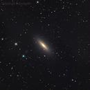 """galassia Ngc3115 nella costellazione del Sestante """"Spildle Galaxy"""",                                Rolando Ligustri"""