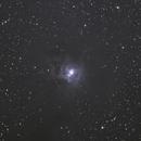 2021 - NGC7023 - Iris Nebula,                                Chris George