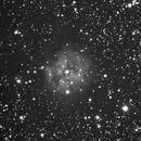 Cocoon nebula  IC5146,                                tintin2010