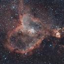 Heart Nebula - First Light,                                Centenojoel