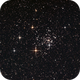 Open Cluster NGC 2516 in Carina,                                Roger Groom