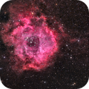 NGC 2237 - The Rosette Nebula,                                AllAboutRefractors