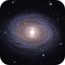 NGC 1398,                                Adam Block