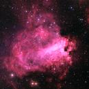 M 17  Omega Nebula,                                Roger Bertuli