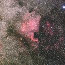 Nébuleuses de l'Amérique du Nord et du Pélican,                                Serge Golovanow