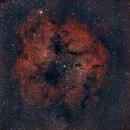 IC1396,                                Francisco Bitto
