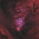 Cone Nebula,                                Steven Miller