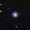 M61 with SN2020jfo,                                Bob Stewart
