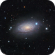 M63 The Sunflower Galaxy,                                Ron Stanley
