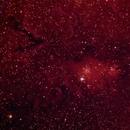 Christmas Tree Cluster, Cone Nebula, Fox Fur Nebula, Hubble's Variable Nebula,                                Jeffrey Horne