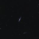 NGC 4631 - The Whale Galaxy,                                Trevor Jones