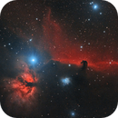 The Horsehead Nebula,                                Michal Rak