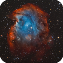 NGC2174 - Monkey Head Nebula - in Narrowband and RGB stars,                                Volker Gutsmann